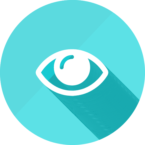 Blink Optometrists Services Icon Eye care